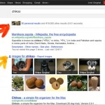 Search Plus Your World, una fuerte movida social de Google