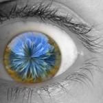 El contenido visual se presenta como una herramienta de marketing exitosa