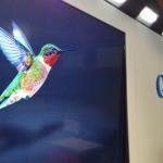 Colibrí (Hummingbird) es el nuevo algoritmo inteligente de Google