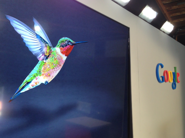 colibri_hummingbird_google